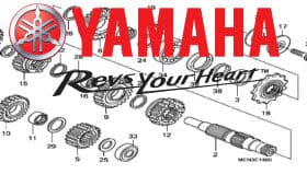 Yamaha YPIC